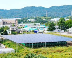 solar-sharering