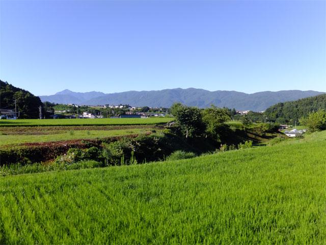 nouchi-inaka