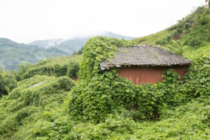 sanrin-house