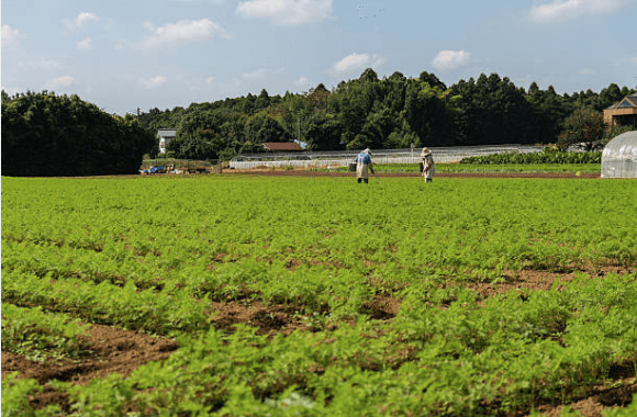 farmland-diversion01